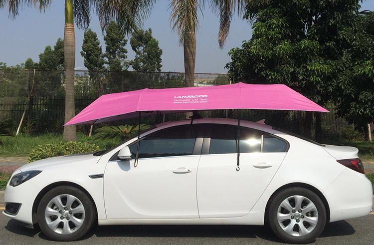 暑い夏の車の避難所の必要性